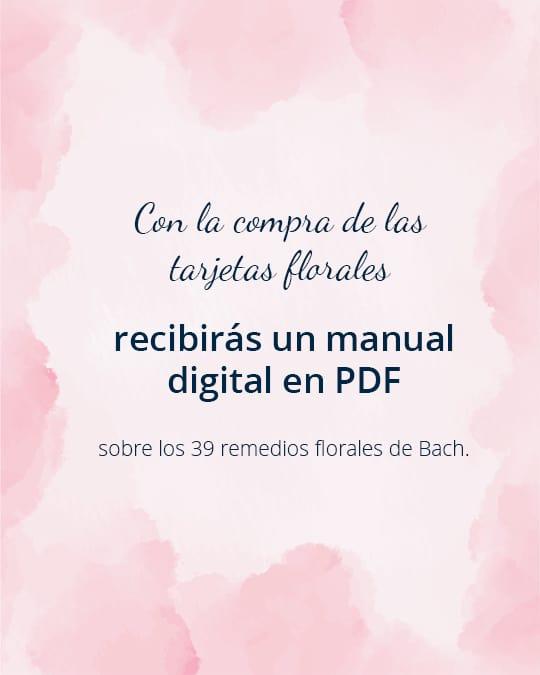 PDF Tarjetas Florales